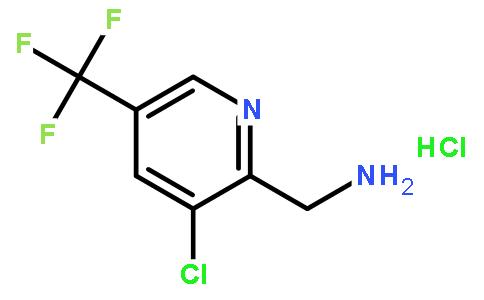 2-甲氨基-3-氯-5-三氟甲基吡啶盐酸盐